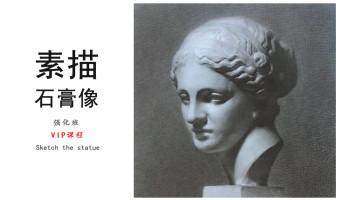 【VIP】素描石膏像(强化)画画/绘画/美术/人像基础/高考/造型