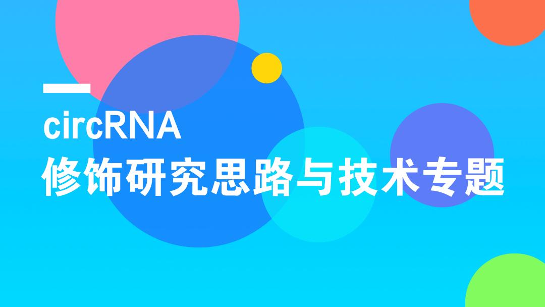 circRNA修饰研究思路与技术