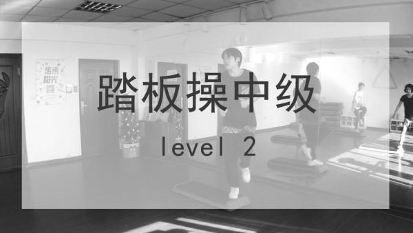 L11实录课 踏板操中级课