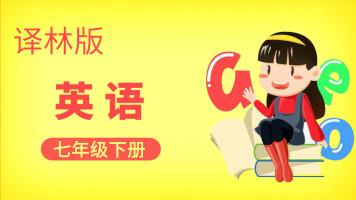 译林版英语七年级下册【一人班时间灵活内容个性化】