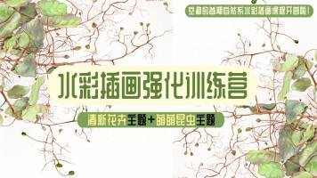 【插画训练营】水彩花卉与昆虫