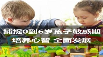 捕捉宝宝幼儿童敏感期了解孩子内心家庭育儿亲子教育