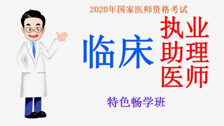 2020年国家医师资格考试临床执业助理医师技能通关班