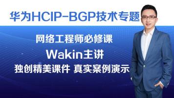 华为HCIP-BGP技术专题/华为HCIP认证/华为HCNP认证/BGP/高级路由