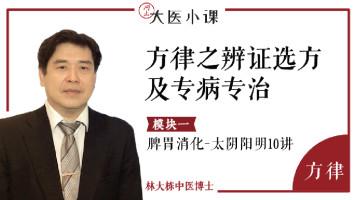 辨证选方及专病专治:脾胃消化_太阴阳明10讲