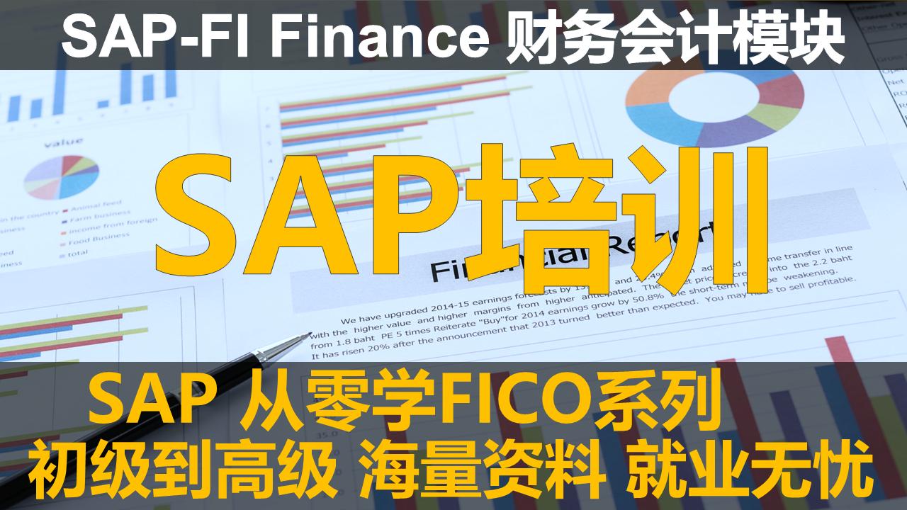 SAP 从零学FICO系列