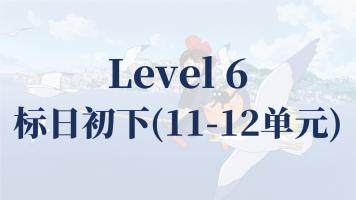 Level6(标日初下11-12)N4