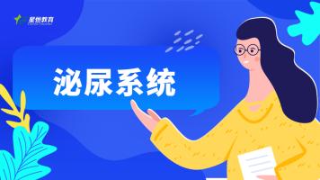 临床执业医师/助理医师 泌尿系统 基础精讲