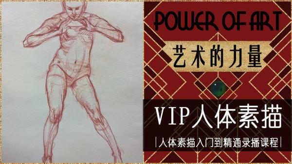 艺术的力量——VIP人体素描【人体素描入门到精通录播课程】