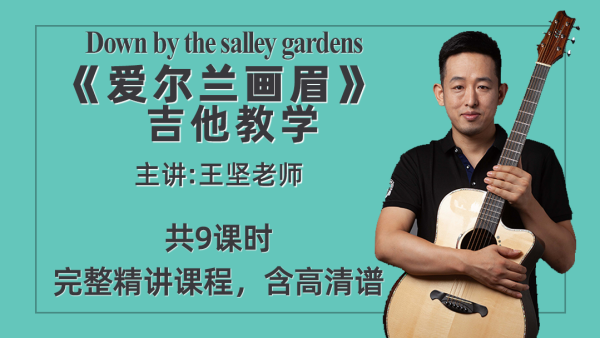 《爱尔兰画眉》王坚指弹吉他教学视频含吉他谱及同步示范sally