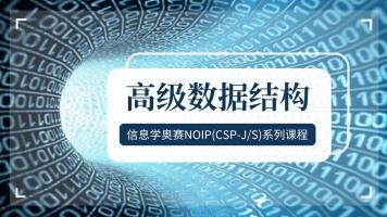 青少年信息学奥赛(NOIP、CSP-J/S)系列视频课程之高级数据结构