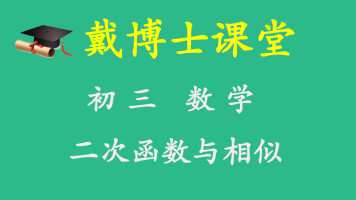 初三数学 函数专题 二次函数与相似
