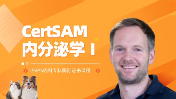 2019 SAM-Modul16内分泌疾病Ⅰ
