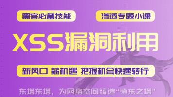 东塔-XSS漏洞利用web漏洞/渗透/XSS/钓鱼/网络安全/支付漏洞/爆破