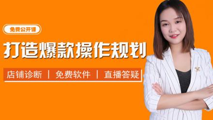 1新手开店找盈利货源 新品全面系统规划运营推广手淘首页免费引流