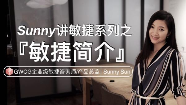 Sunny讲敏捷系列之——《敏捷简介》