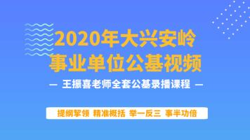 2020年大兴安岭事业单位公基视频