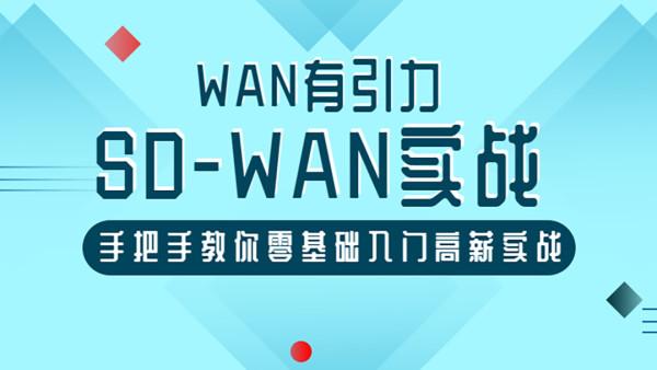 【知识库】SD-WAN精英实战营