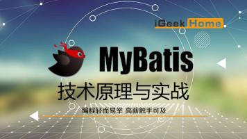极客营-MyBatis技术原理与实战