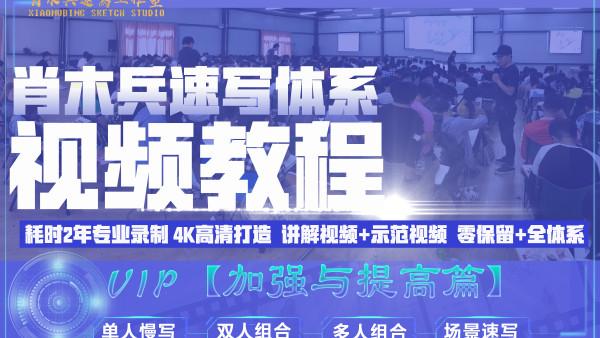 VIP肖木兵速写体系教程【加强与提高篇】