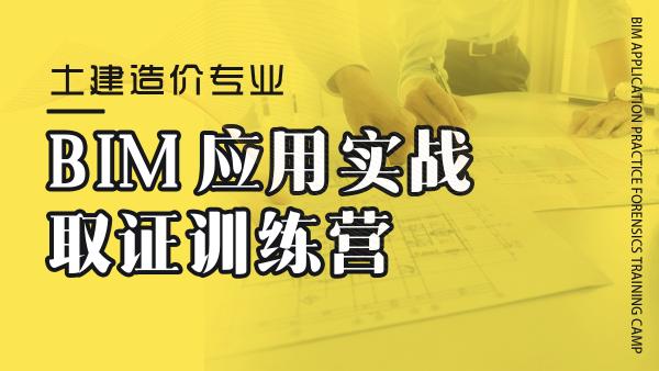 BIM应用实战取证训练营-土建造价