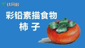 手绘素描彩铅食物(柿子) 姗姗老师【雄狮网校】
