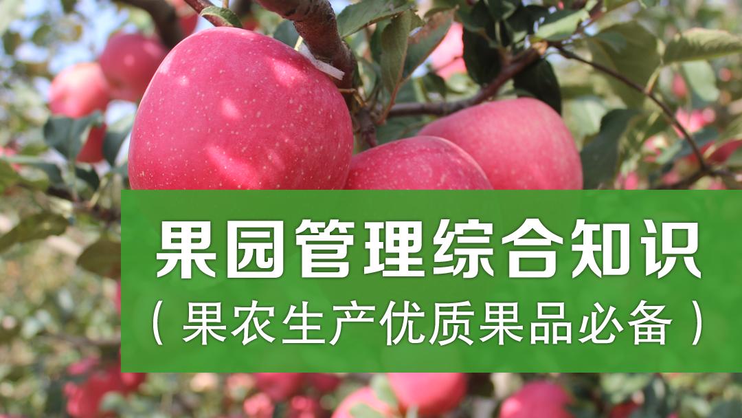 果园管理综合知识