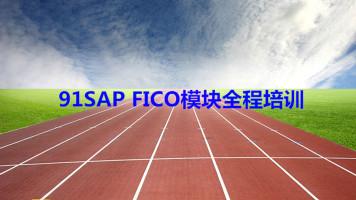91SAP FICO模块全程培训