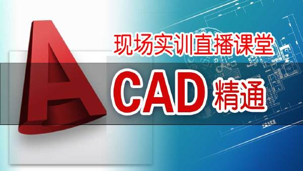 CAD(2008)从入门到精通(现场实训课堂高清录制)【卓越教育】